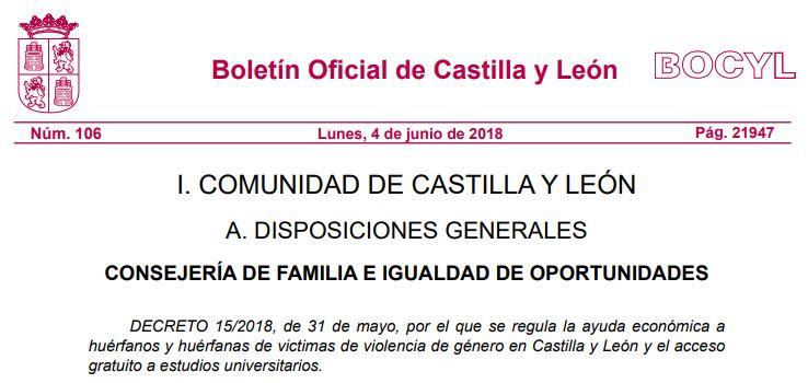 Castilla y León publica el decreto que regula la ayuda económica a huérfanos y huérfanas de violencia de género.